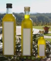 Eine Olivenernte auf Sizilien - sorgt für Entspannung und Erholung