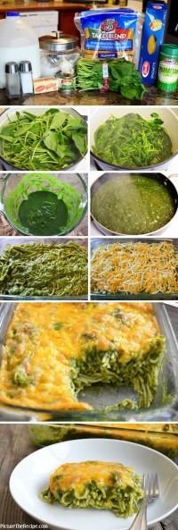 Cheesy Spinach Pasta Bake Food Pix | Recipe by Picture