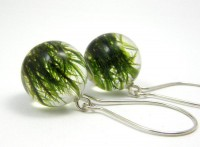 Moss Round Earrings Forest Jewelry with Natural Moss by sisicata