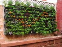 Pallet Vertical Garden - 16 Do It Yourself Ideas | Wooden Pallet Furniture