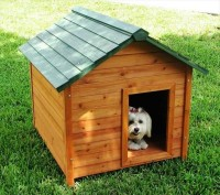 Dog Crates Made Out of Pallets | Pallet Furniture DIY