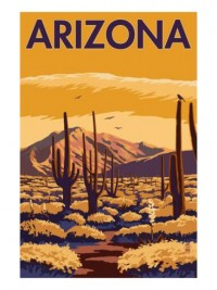 Arizona Desert Scene with Cactus Print at eu.art.com
