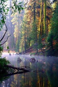 Heaven | See More Pictures | #SeeMorePictures