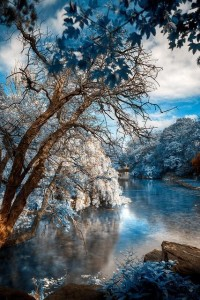 Beautiful Nature | See More Pictures | #SeeMorePictures