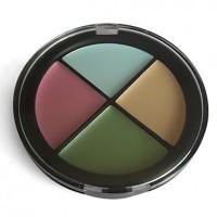 4 Colors Natural Finish Concealer Makeup Palette NO.4 - makeupsuperdeal.com