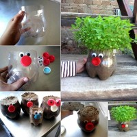 DIY Cute Plastic Bottle Planter DIY Projects | UsefulDIY.com
