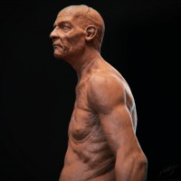 Old man bust - 3DTotal Forums