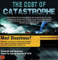 The Cost of Catastrophe