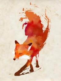 Vulpes vulpes Art Print by Robert Farkas | Society6