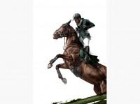HelloVon - Equestrian Olympics