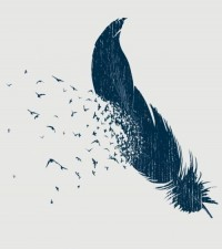 Illustration Love / birds of a feather, flock, feather