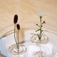 Fancy - Floating Ripple Vases by oodesign