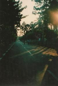 ? ?????'s photos | 21 albums