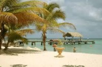 trinidad - Google zoeken
