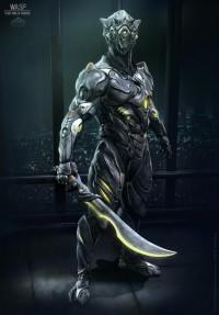 Wasp Teno Ninja - CGFeedback