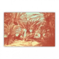 Red Palm Trees Wood Print - Pascalplus - Artists