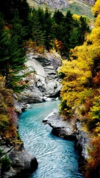 Shotover River Art Print by Daniel Wiltshire | Society6