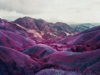 Richard Mosse | Infra