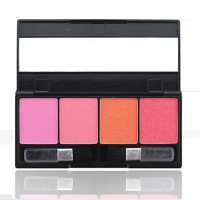 Mini 4 colors Blush - makeupsuperdeal.com