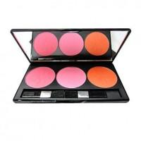 Mini Shinning Case of 3 Cheek Colors - makeupsuperdeal.com