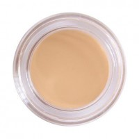 Perfect Concealer - makeupsuperdeal.com