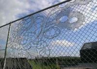 Amoebas Amoebas Everywhere! • Lacy Fence pinterest.com