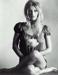 Amoebas Amoebas Everywhere! • retrogasm: Sharon Tate