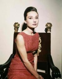 Amoebas Amoebas Everywhere! • Audrey Hepburn