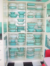 Amoebas Amoebas Everywhere! • PYREX!