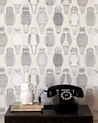 Amoebas Amoebas Everywhere! • Love the wallpaper