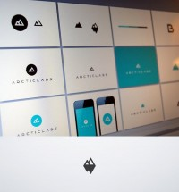 Arcticlabs_identity_Bigger.jpg by Cosmin Capitanu
