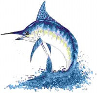 Fish Art gifts greeting cards, note cards, fishing gifts, fishing art