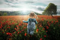 500px / Photo Into the Poppies by John Wilhelm | Summer