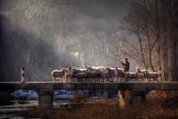 Mesmerizing Chinese Countryside Photography | Abduzeedo Design Inspiration