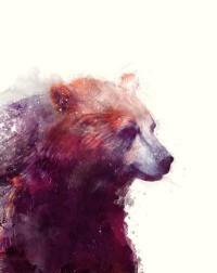Amy Hamilton | Design and Illustration