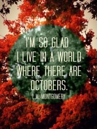 #budgettravel #travel #foliage #fall #autumn ... | Fall into Foliage