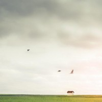 Minimalist Photography by Laura Vanzo | Photography Blog