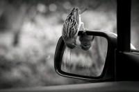 500px / portrait . by Abdulla Alketbi