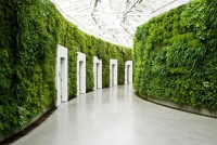 500px / Vegetated corridor by Frederik Togsverd