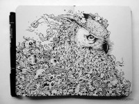 The Doodle Animal Kingdom › Illusion