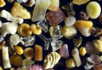 Sand under a microscope. Slightly less boring than usual. | StrangeLove