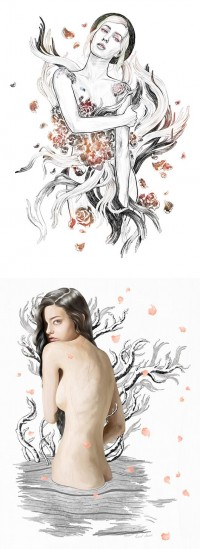 Illustrations by Lucid Dream | Inspiration Grid | Design Inspiration