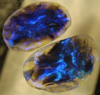 V | Lightening Ridge Opal