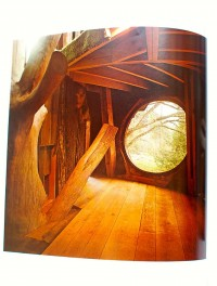woodstock4.JPG 995×1,314 pixels