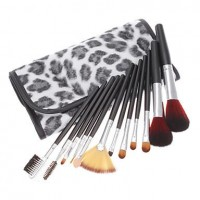 12 Makeup Brushes Brush Set Eyeshadow Blush Lip Gloss Pen Case