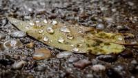 500px / Mitten im Regen... by Thomas TRENZ