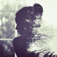 Girl in the Window | Phantasma