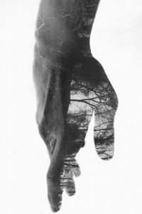 tumblr_mvcdtjkjrO1sqdideo1_500.jpg (Image JPEG, 498x750 pixels) - Redimensionnée (80%)