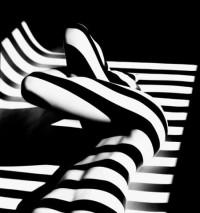 Francis Giacobetti à la Galerie Matignon | Photographie.com