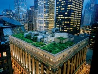 Rooftop Garden Picture -- Chicago Photo -- National Geographic Photo of the Day